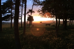 sunset-in-the-cotswolds-1340490